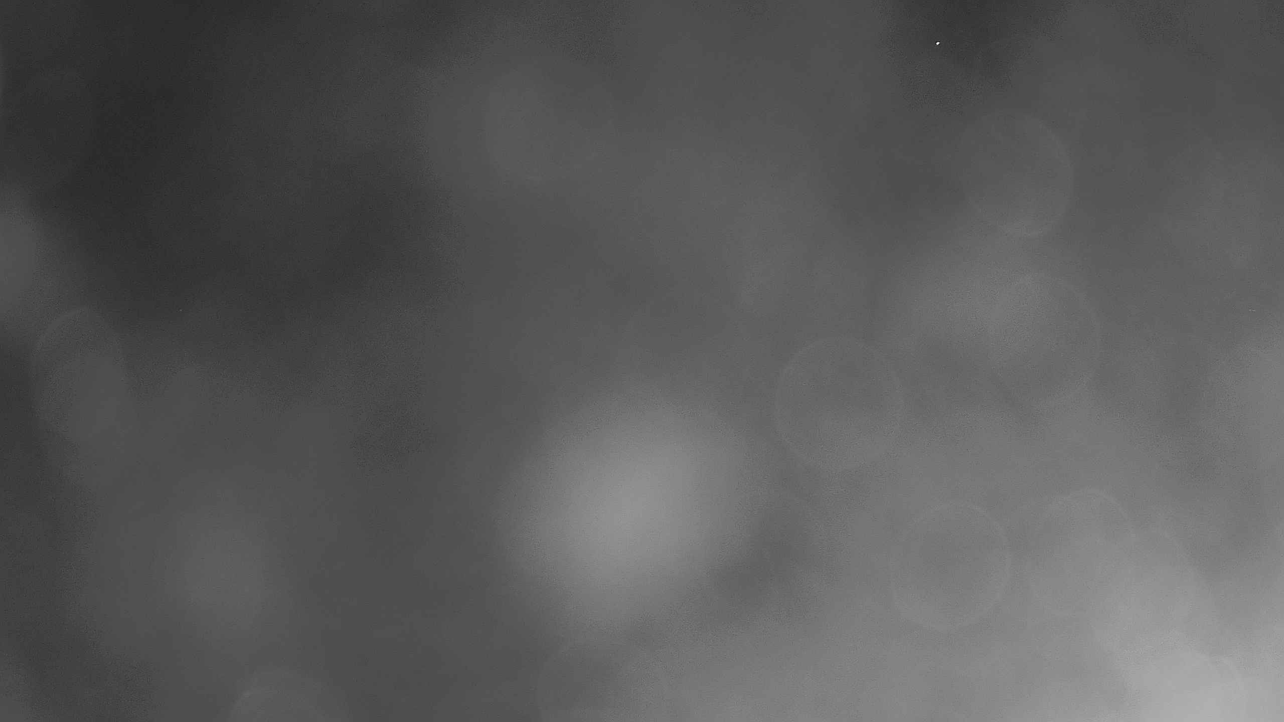 Coolum surfcam still image