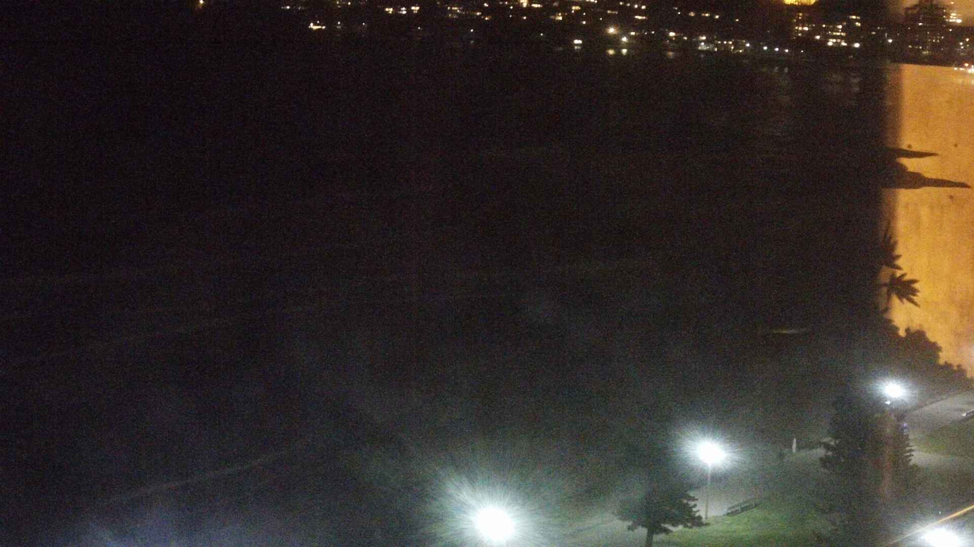Manly surfcam still image