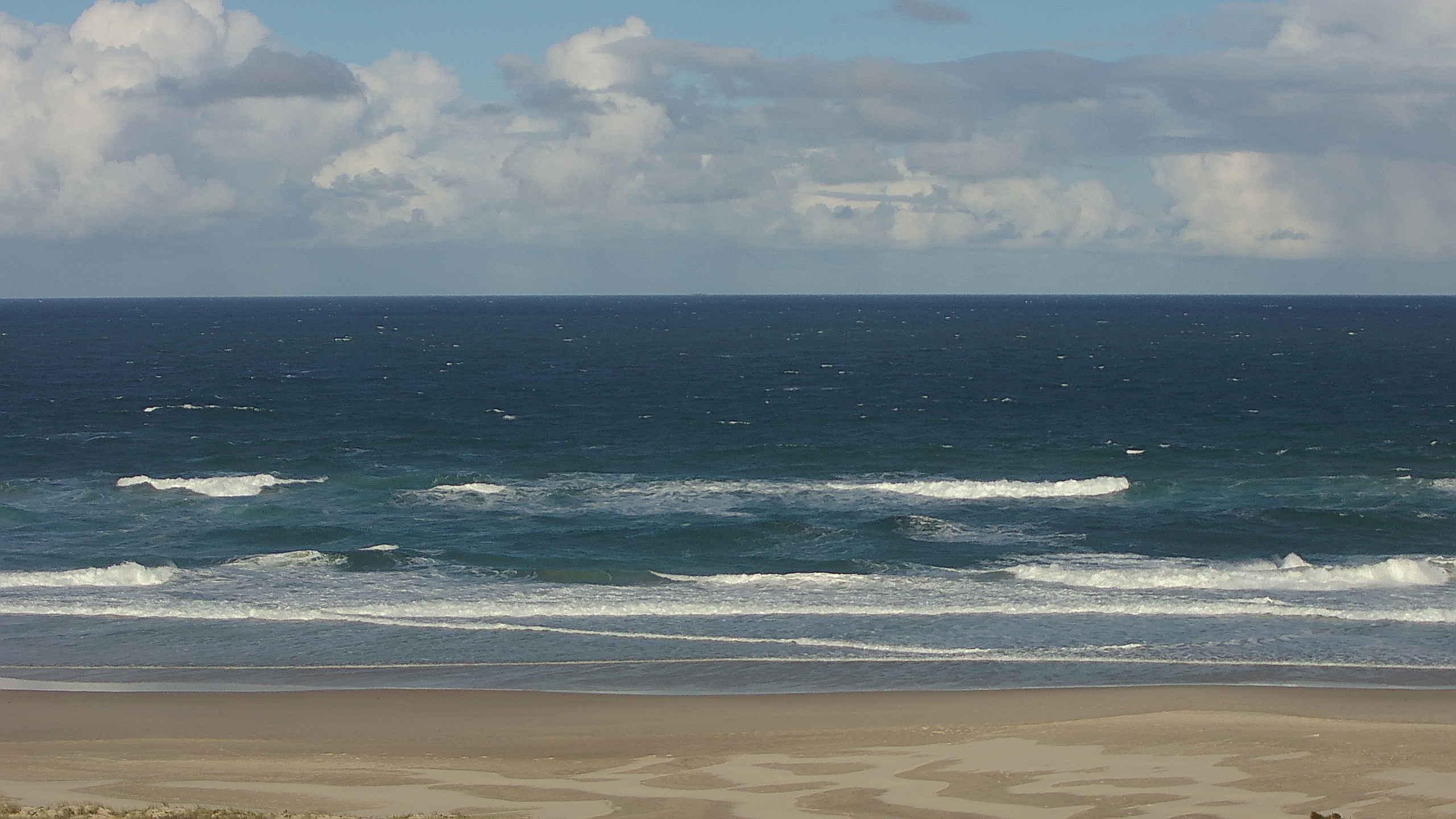 Pippies surfcam still image